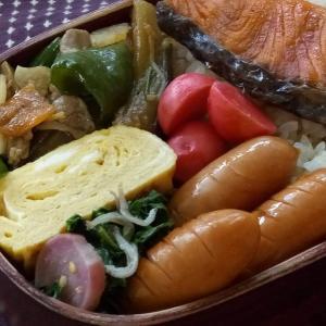 6月のお弁当(塩鮭)