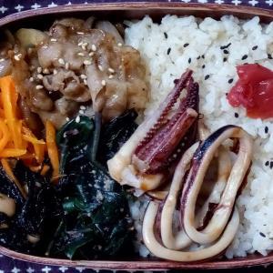 6月のお弁当(イカ焼き)