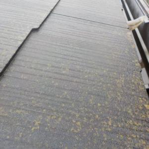 2019年1月相模原市で外壁屋根塗装工事行いました(^^)/ぬりいち