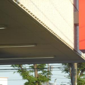 埼玉県・特別給付金 自治体の約6割が5月中に支給へ