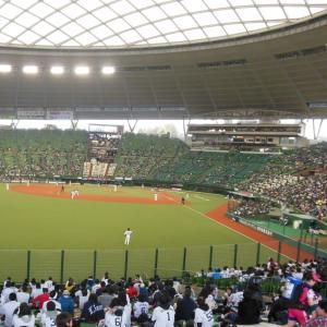 埼玉独自大会 準決勝・決勝は西武本拠地で開催