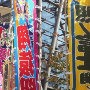 大相撲夏場所 大関照ノ富士の優勝が見えてきた