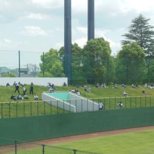 夏の埼玉大会 V候補は2強の浦和学院と花咲徳栄