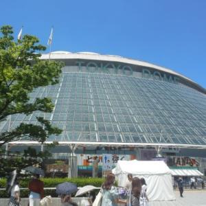 東西東京大会 史上初、東京ドームで決勝戦