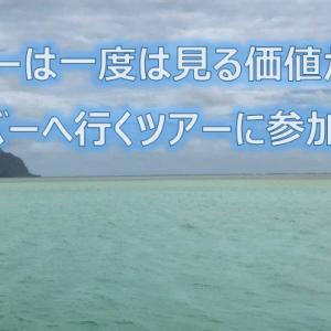 KBOSのハワイ 天国の海とバナナボートのツアーに参加しました