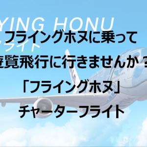 ハワイに行かなくてもフライングホヌに乗れる 「ANA FLYING HONU」チャーターフライト
