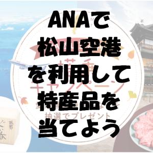 ANAで松山空港を利用して特産品を当てよう「ANA 松山空港 搭乗キャンペーン」(2020年10月1日~2021年2月7日)