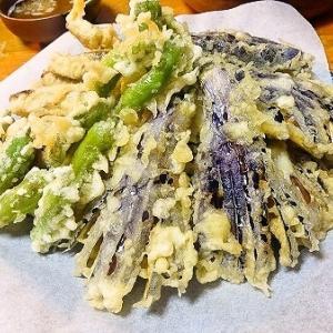 ポカポカ陽気【今日の晩御飯】