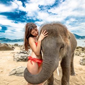 今日も象さんと一緒に記念写真