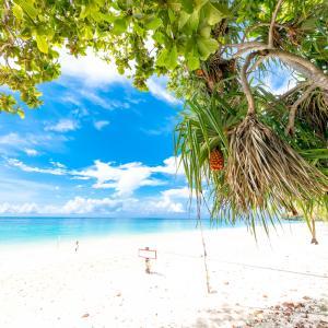 天国に一番近い島🏖