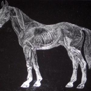 柔軟な発想がユニークな作品を生む! 馬じゃなくたって、いいじゃない。