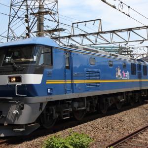 桃太郎ラッピングが付いたEF210-317号機を初撮影する 貨物列車撮影 5/30