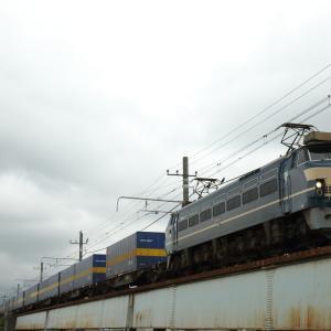 梅雨空のニーナ×カンガルーライナー 貨物列車撮影 6/21