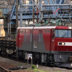 キンタ牽引新日鉄レール輸送列車 貨物列車撮影 7/5