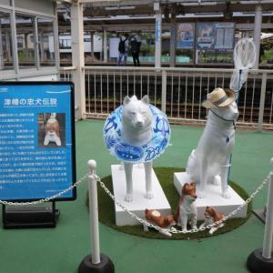 犬(ワン)ダーランドな津幡駅 JR東海 完乗の旅 6日目⑤