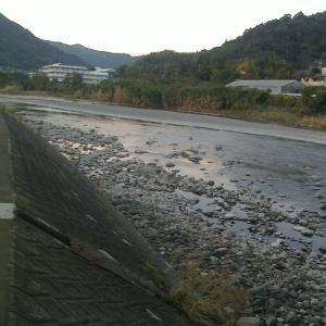 興津川承元寺堰堤でタコ