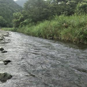 大井川支流エーヤマガー