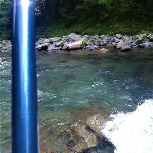 大井川支流笹間川で釣り方の指導を受ける
