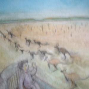 カンガルーと競争だ~オーストラリア横断ヒッチの旅