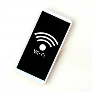 俺、Wi-Fiないと死ぬから発言で私が死ぬ