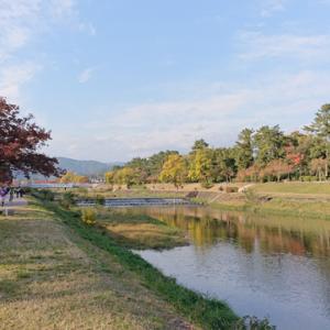 神戸マラソン応援ラン