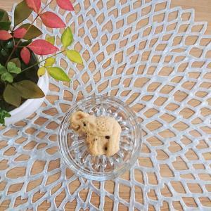 【焼き菓子】タイのお土産★象さんクッキーが可愛い件♪