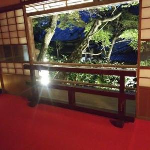 柳谷観音楊谷寺のライトアップに行ってきました。