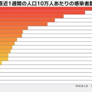 乙訓地域 新型コロナウイルス感染者数(7月29日現在)