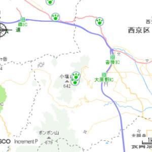 長岡京市近郊でクマが目撃されました。