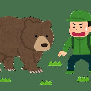 【クマの目撃情報について】 島本町