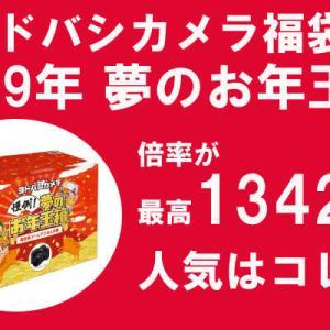 ヨドバシカメラの2019年福袋の倍率が1342倍突破!人気はコレ!
