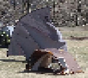 やはりデレだけじゃなかった内山牧場 タープがブッ飛ぶ強風でミリタリータープがまたまた破損!~今季初のツンデレ内山牧場⑨~