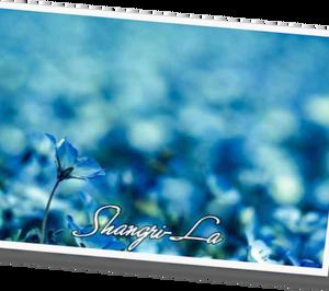 Shangri-La  5