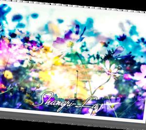 Shangri-La  11