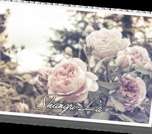 Shangri-La  32
