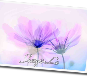 Shangri-La  53