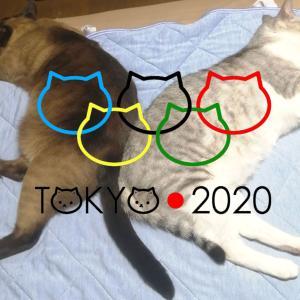 オリンピック開会式!
