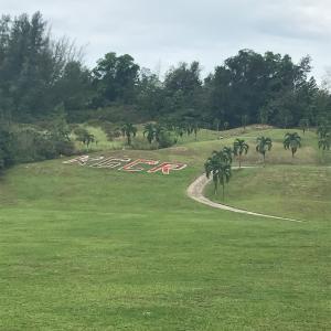 ゴルフ合宿2日目は、まさかの2ラウンド