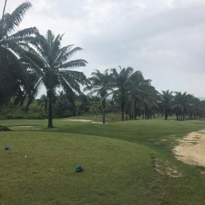 平成最後のゴルフは2ラウンド