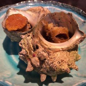 【米子市】夜の宴は「海座」で魚介を堪能・・・ちょいと境港市まで行ってきました。④