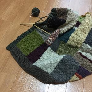 夏に向かうこの季節にウールのカーディガンを編むのか(17)前立てができた