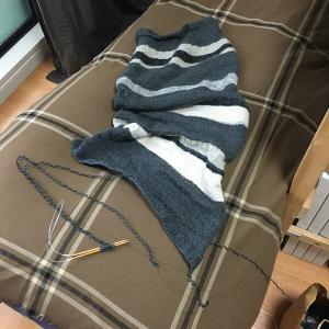 毛糸のパンツをひざ掛けに編み直す(12)半分できて
