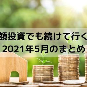 少額投資の実態を報告-5月-