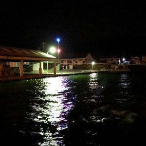 【釣り/南房総】10月・南房千倉で波風をしのいでヌクヌクと夜釣り。