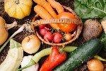 ミネラル豊富な野菜