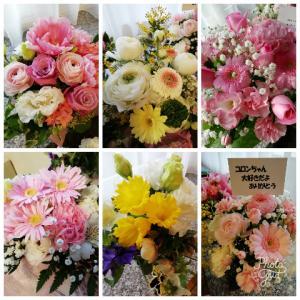 たくさんのお花に囲まれて