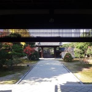 随心院~小野小町ゆかりの寺
