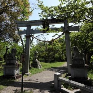 奥石神社~繖山を御神体とする社