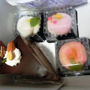 ムスメの茶菓子デビュー