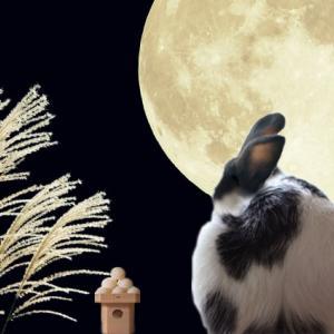 十五夜お月さん見て跳ねる
